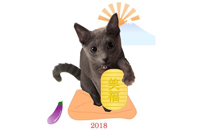 年賀状2018(猫)