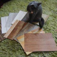 猫ハウスクロス検討